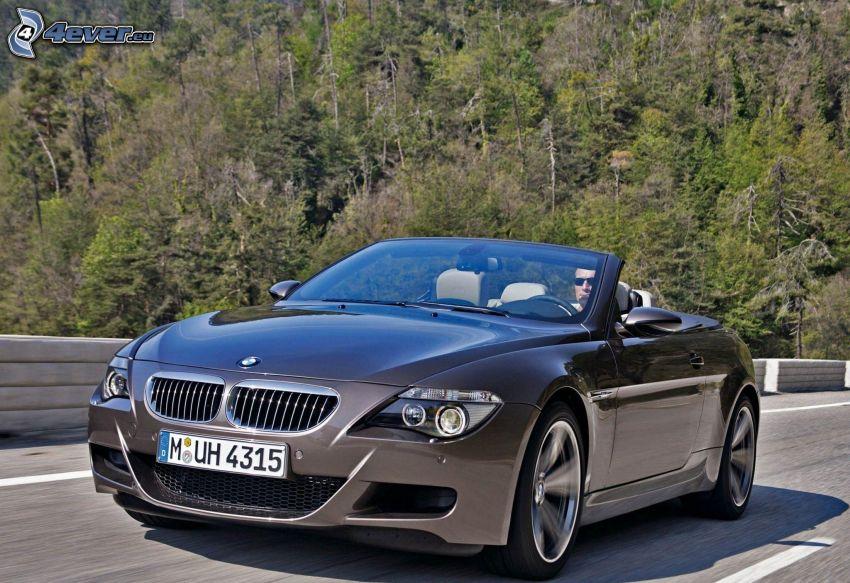 BMW M6, convertible, speed