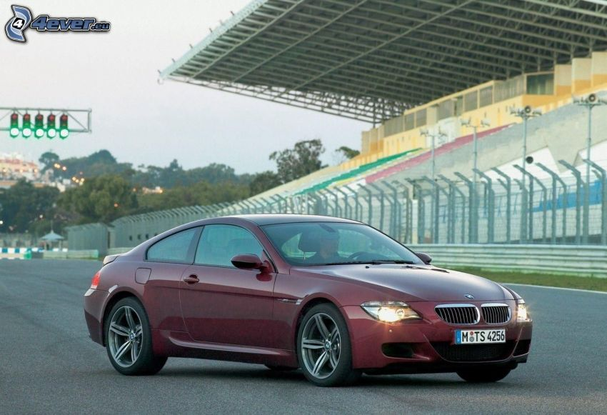 BMW M6, tribune