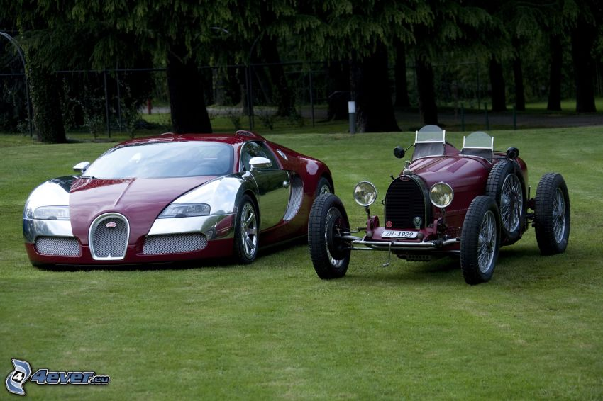 Bugatti Veyron, oldtimer, convertible, lawn