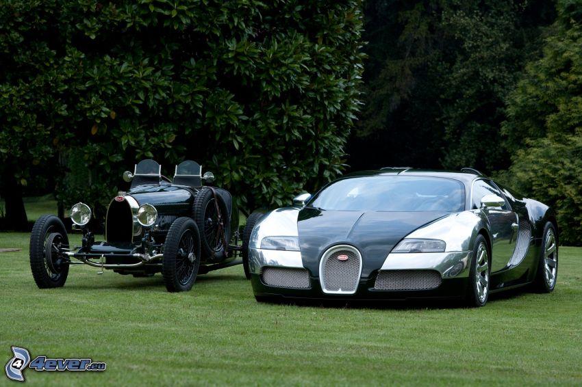 Bugatti Veyron, oldtimer, trees