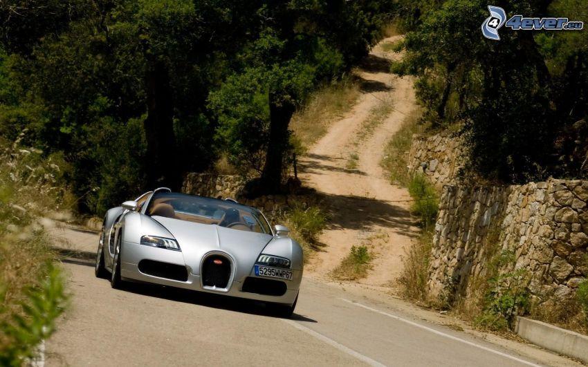 Bugatti Veyron 16.4, forest road, trees