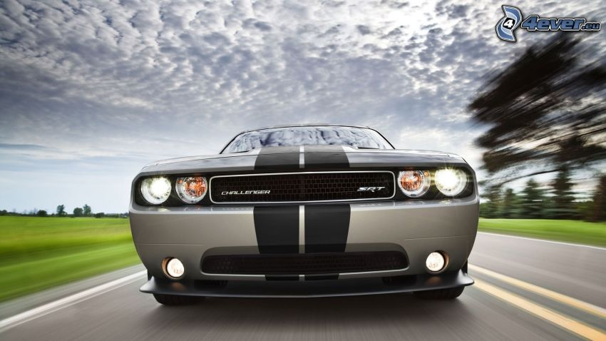 Dodge Challenger SRT, front grille, road, speed