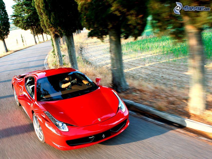 Ferrari 458 Italia, speed, avenue of trees