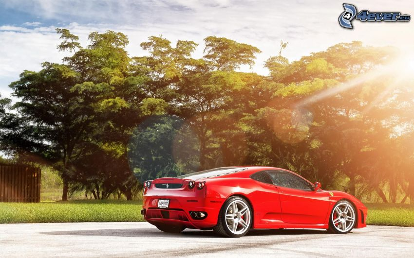 Ferrari F430, trees