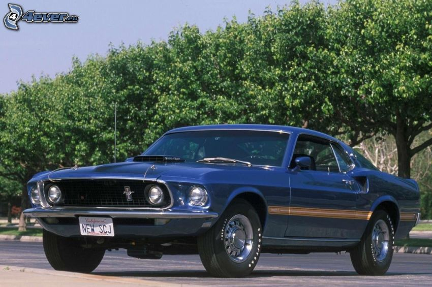 Ford Mustang, oldtimer, trees