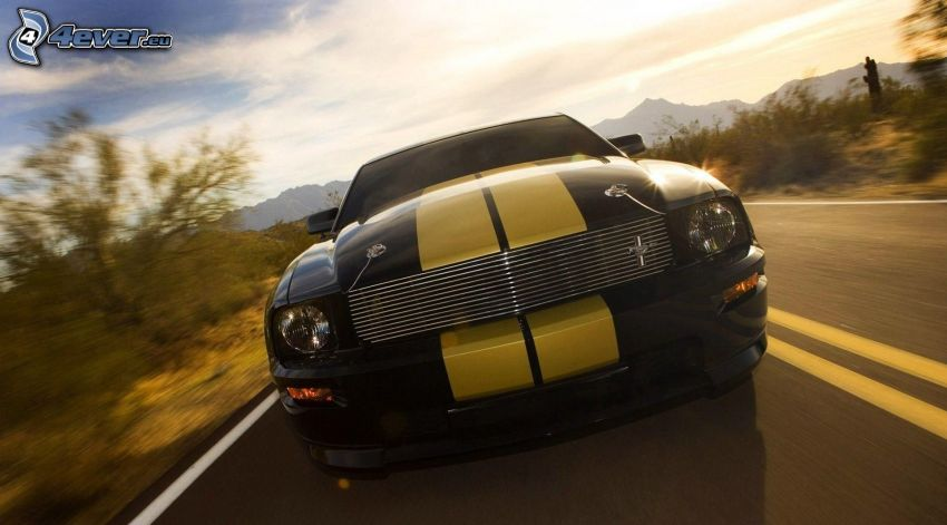 Ford Mustang, speed, road