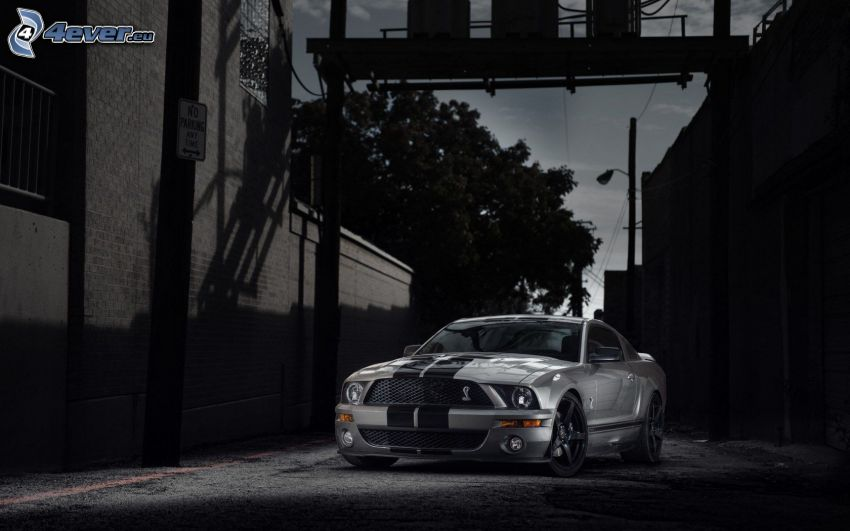 Ford Mustang GT500, street