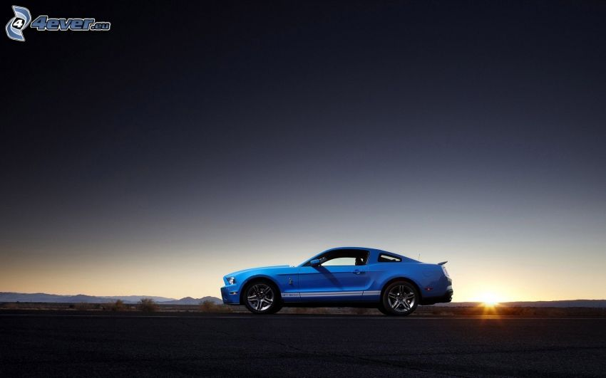 Ford Mustang Shelby GT500, sunset