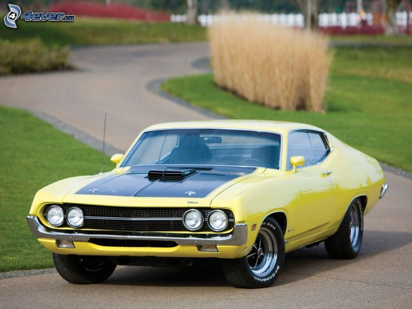 Ford Torino, road