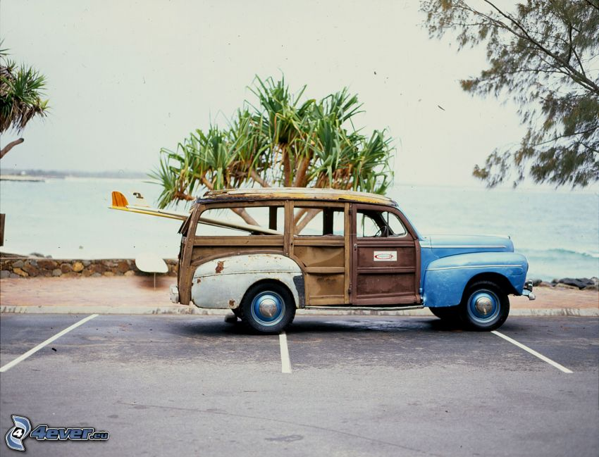 Ford Woody, oldtimer, palm tree, car park, sea
