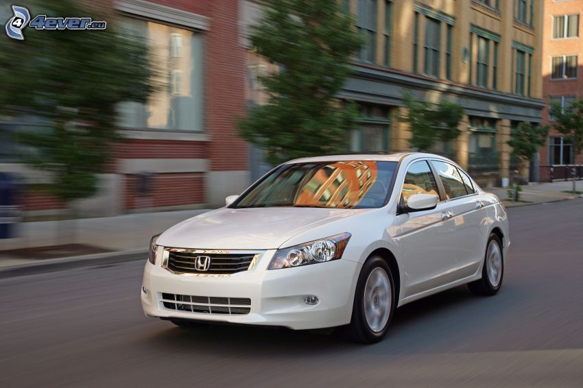 Honda Accord, speed, street