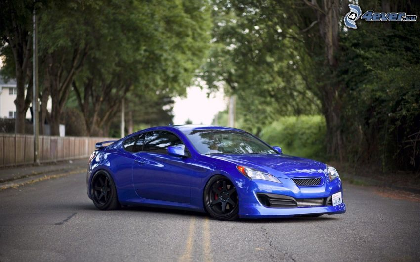 Hyundai Genesis, avenue of trees