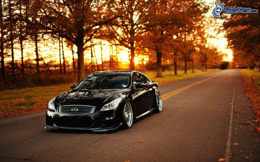 Infiniti G37, lowrider, road, autumn trees