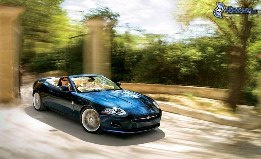 Jaguar XK, convertible, gate, speed