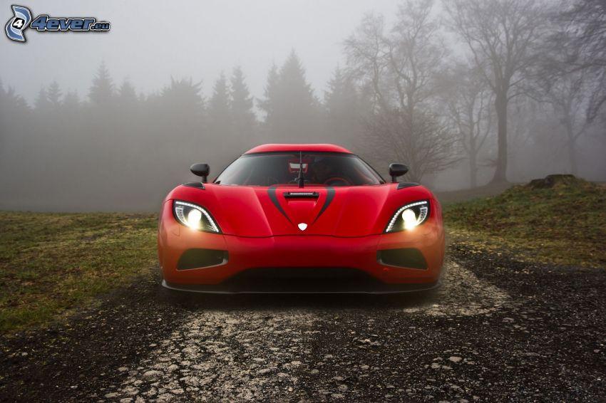 Koenigsegg Agera R, road, fog in forest