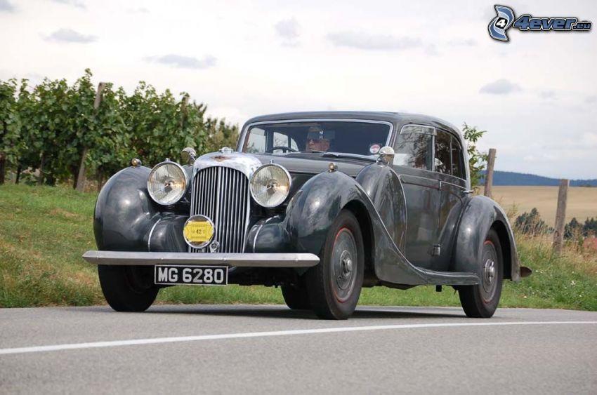 Lagonda V12, oldtimer, vineyard