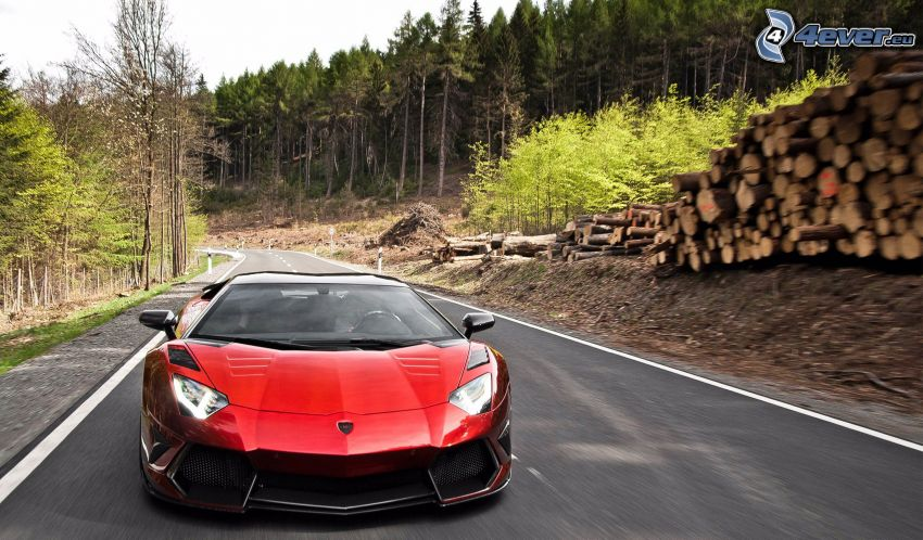 Lamborghini Aventador, forest, road