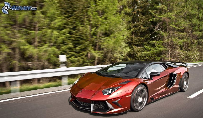 Lamborghini Aventador, forest, speed