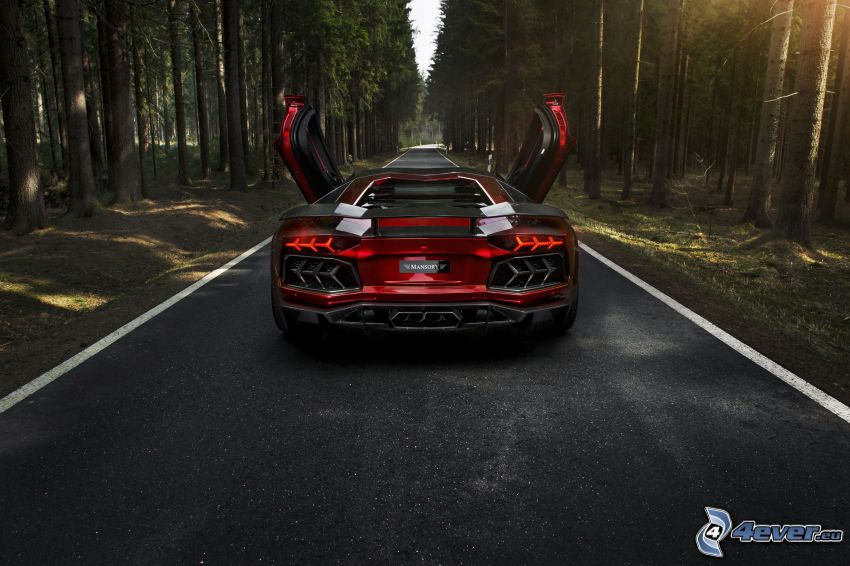 Lamborghini Aventador, road through forest, forest, sunbeams