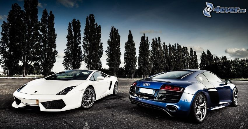Lamborghini Gallardo, Audi R8, avenue of trees