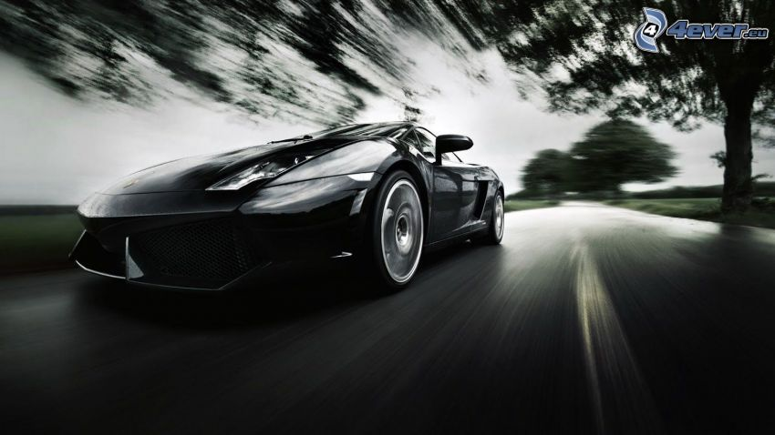 Lamborghini Gallardo, speed, black and white photo