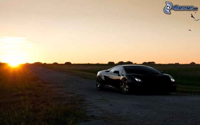 Lamborghini Gallardo, sunset in the meadow