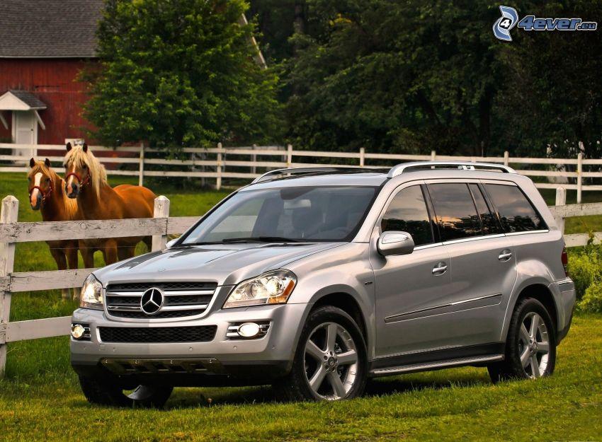Mercedes-Benz GL, horses, palings