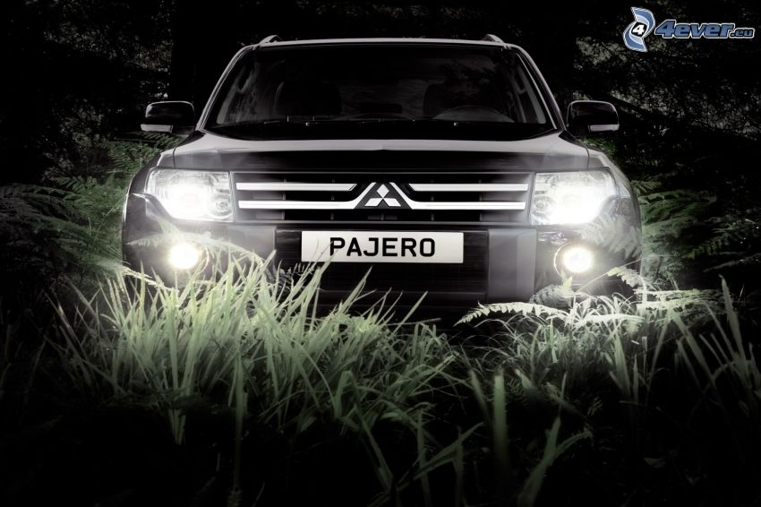 Mitsubishi Pajero, front grille, lights, grass, black and white photo