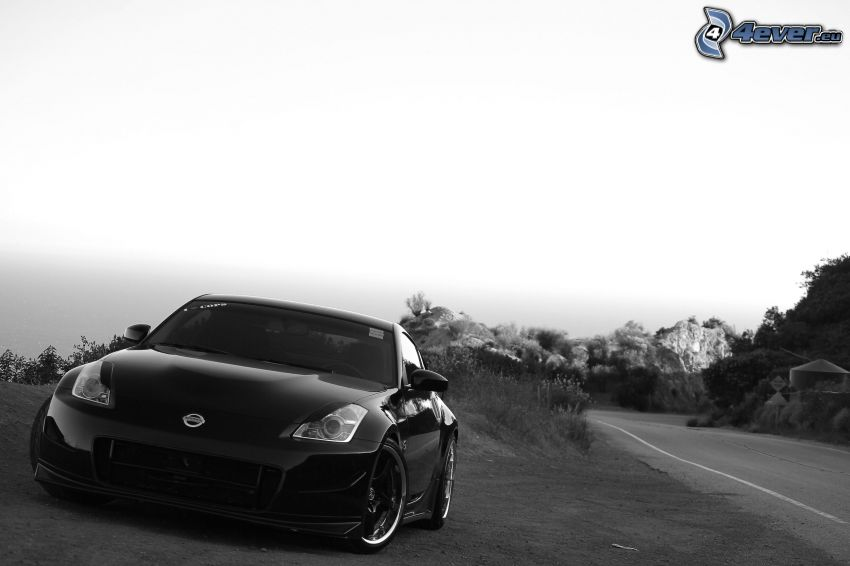 Nissan 350Z, black and white