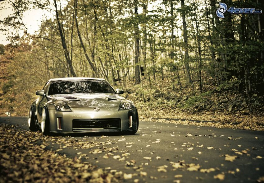 Nissan 350Z, road through forest, autumn forest