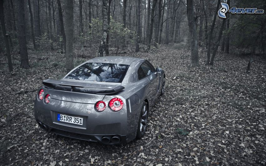 Nissan GT-R, forest