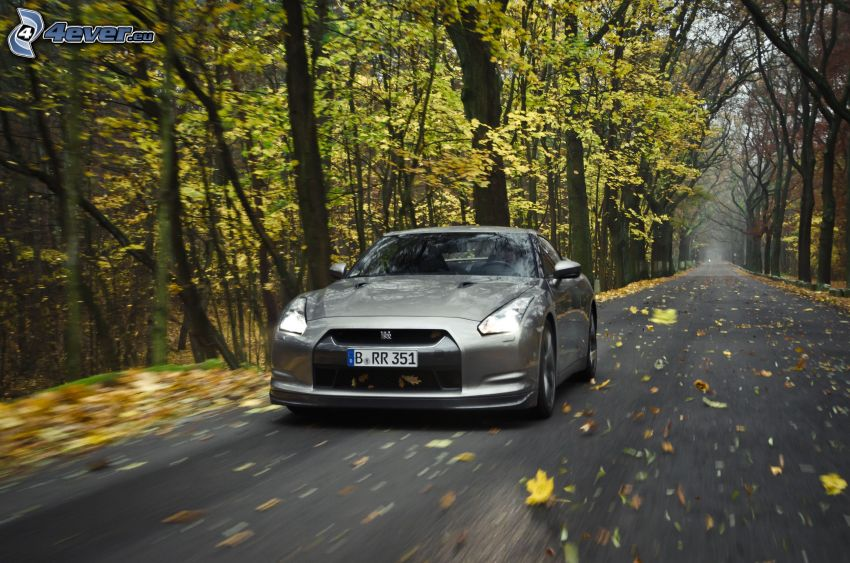 Nissan GT-R, road through forest, autumn leaves