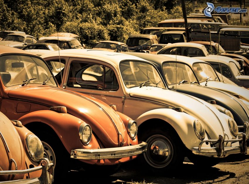 oldtimer parking, Volkswagen Beetle
