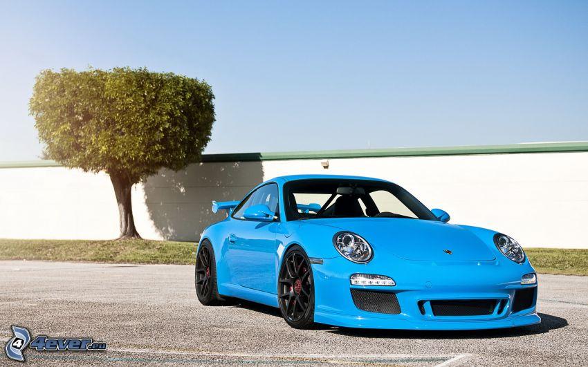 Porsche 911 GT3, tree