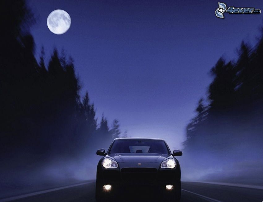 Porsche Cayenne, night, moon, ground fog, road through forest