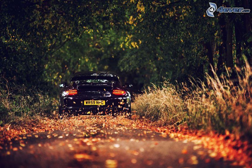 Porsche GT3R, road through forest