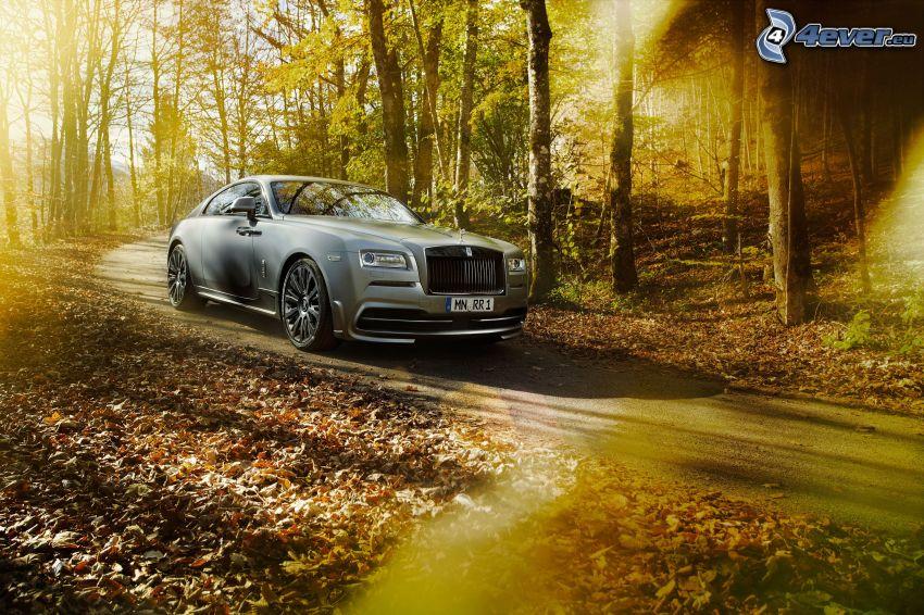 Rolls-Royce Wraith, forest, autumn leaves