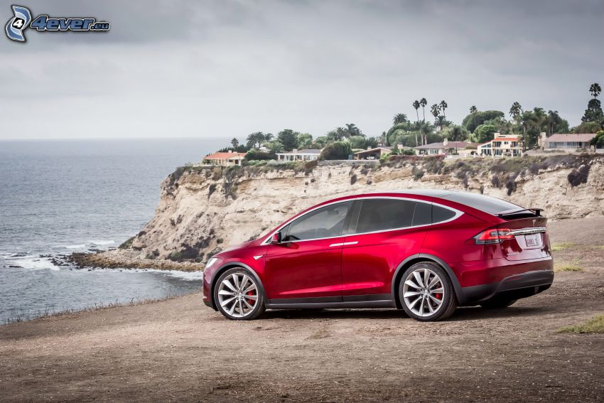 Tesla Model X, cliff, palm trees