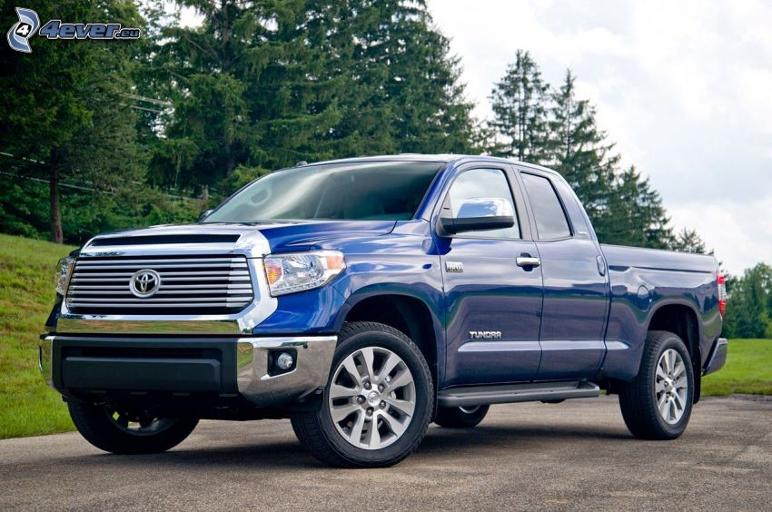Toyota Tundra, forest