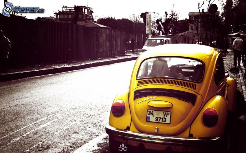 Volkswagen Beetle, street