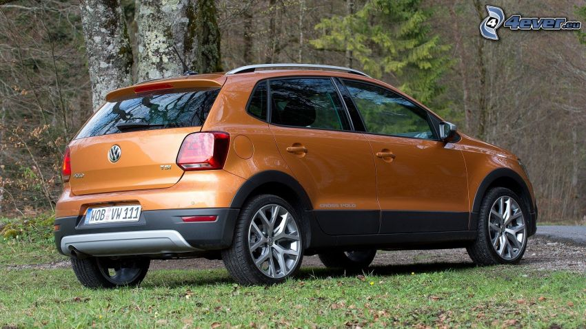 Volkswagen Cross Polo, forest