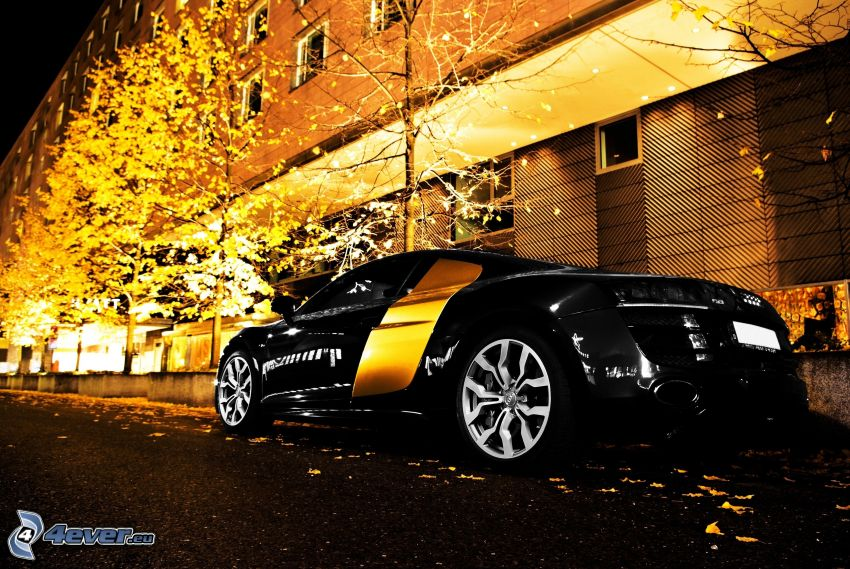 Audi, sports car, yellow trees, block of flats, evening