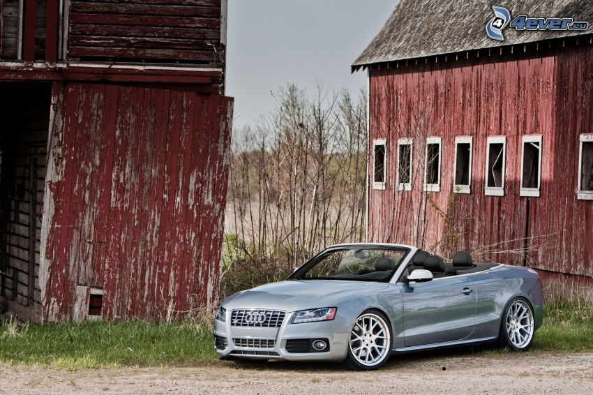 Audi S5, convertible, stable