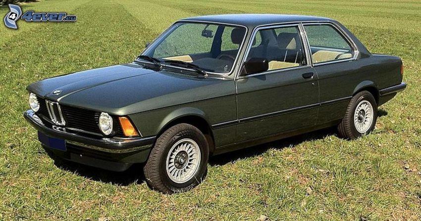 BMW E21, lawn