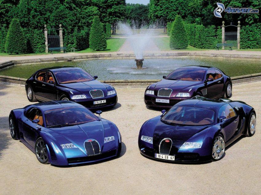 Bugatti, fountain
