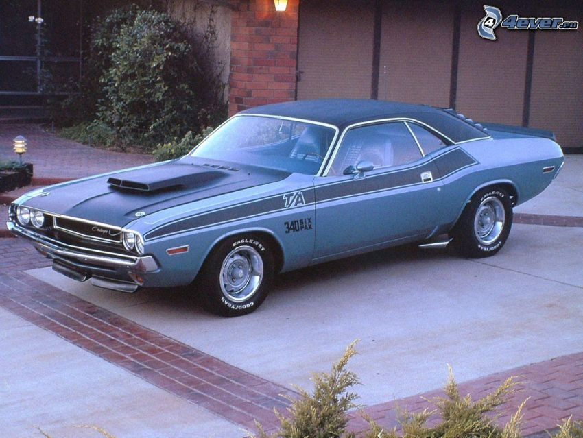 Dodge Challenger, 1970, Muscle Car