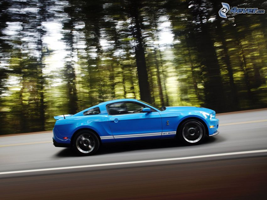 Ford Mustang Shelby, speed, road