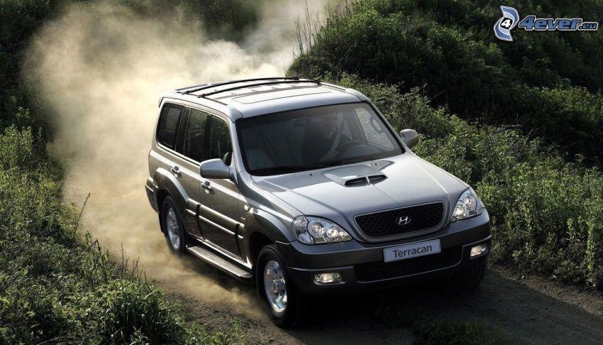 Hyundai Terracan, SUV, field path, dust