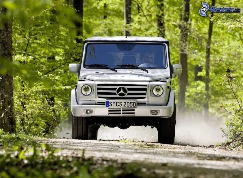 Mercedes-Benz G, forest road, green trees, dust