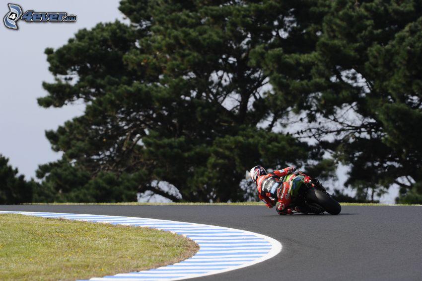 motocycle, moto-biker, road curve, racing circuit, trees